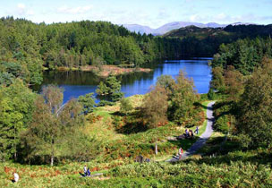 Tarn Hows near Hawkshead in Cumbria
